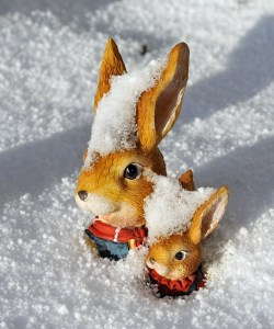 First we dig out the garden gnomes.