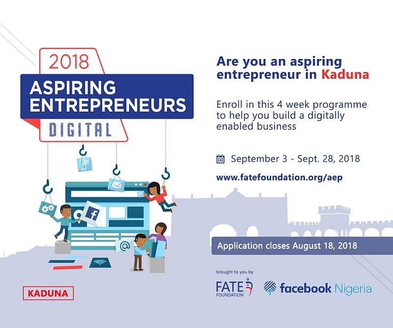 Apply for the 2018 Aspiring Entrepreneur: Digital Programme Kaduna