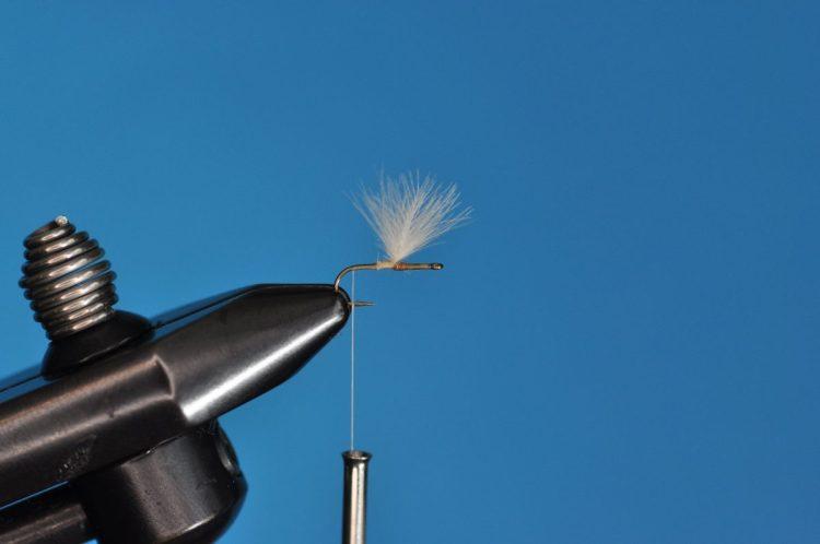 CDC Mayfly Step-by-Step