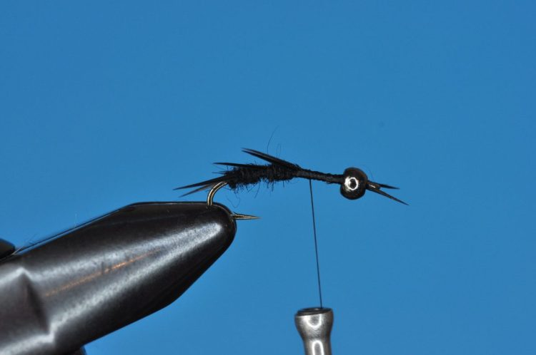 Black Stonefly Nymph Step-by-Step