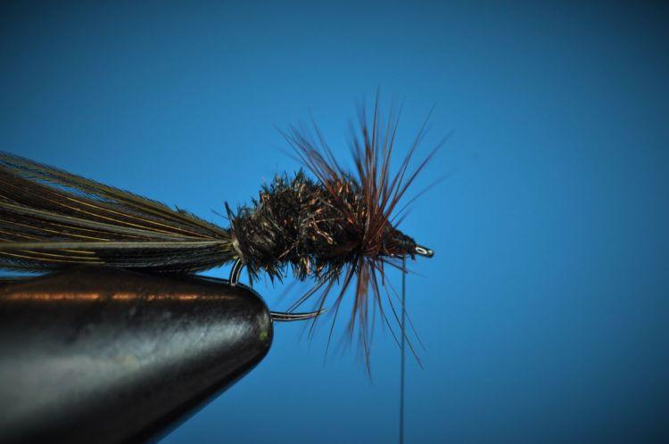 Sunken Beetle Fly Step-by-Step