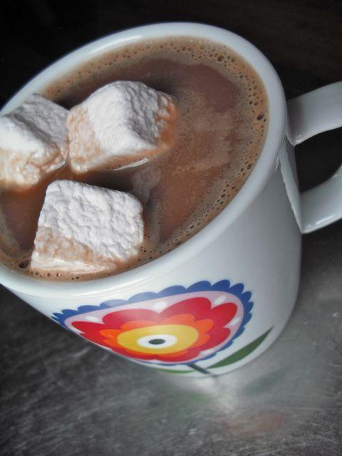 https://i0.wp.com/fatgayvegan.com/wp-content/uploads/2011/04/hot-chocolate.jpg?fit=480%2C640&ssl=1