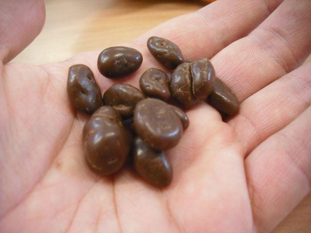 https://i0.wp.com/fatgayvegan.com/wp-content/uploads/2011/12/raisins.jpg?fit=640%2C480