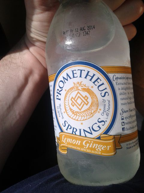 https://i0.wp.com/fatgayvegan.com/wp-content/uploads/2013/06/lemo-ginger-drink.jpg?fit=480%2C640