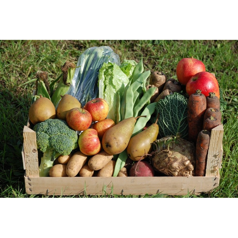 https://i0.wp.com/fatgayvegan.com/wp-content/uploads/2014/12/cyclingveg-family-fruit-veg-crate.jpg?fit=800%2C800