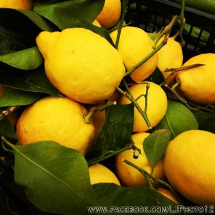 Lemons for sale in Campo de Fiori