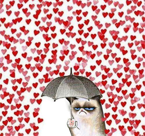 grumpy cat rain hearts