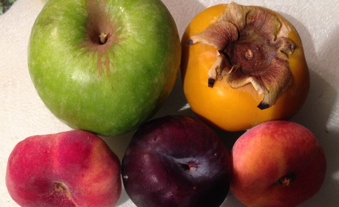 Apple, persimmon, doughnut peach, plum and apricot