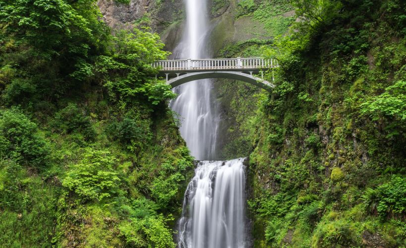 Waterfall crashing through green wooded areas with a concrete bridge crossing it.