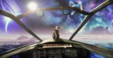 Cat synth