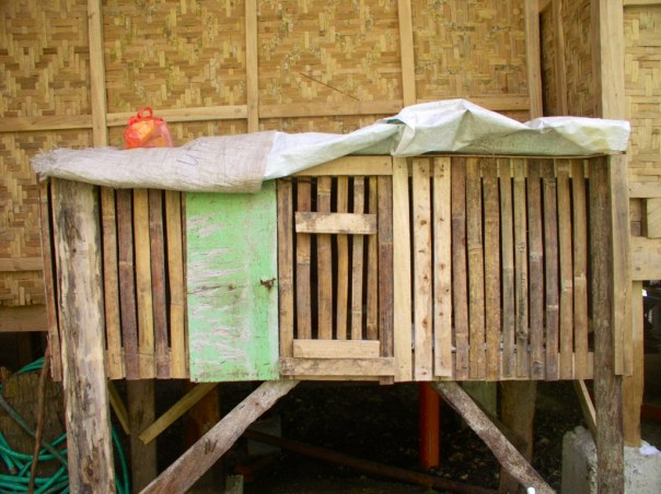 Later, we had this chicken coop built for the nine chicks, so we could keep the chicks outside.