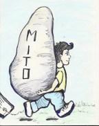 mitomenhir