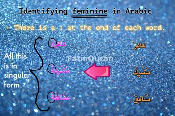 4 identifying feminine in arabic 2