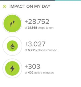 Stats from Fitbit.com from todays hike.