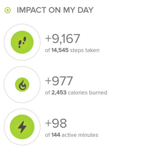 Stats from the hike from fitbit ionic.  The hike was 9,167 steps.