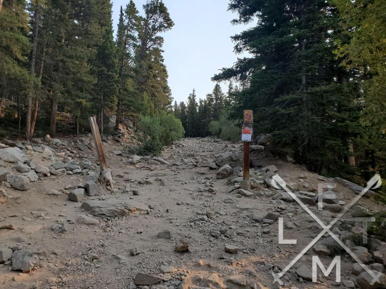 The rocky road that leads up to the lake at St. Mary's Glacier.  The road is littered with rocks from pebbles to hundred pound sizes