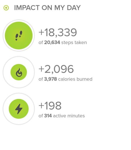 Breakdown of steps from the hike from my fitbit.  18,339 steps on this hike.