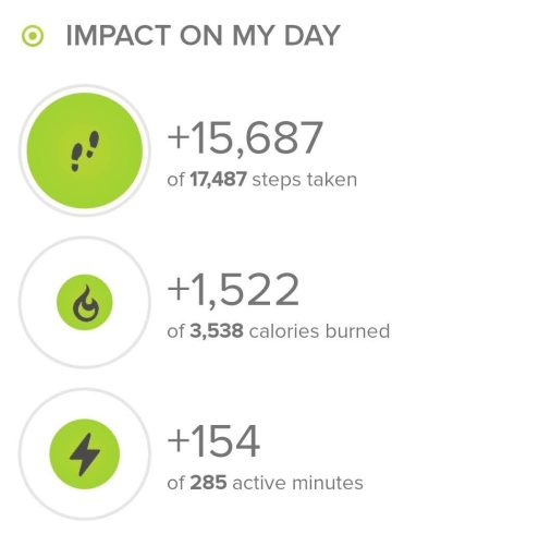 The hikes step count according to my fitbit.  This hike netted 15,687 steps.