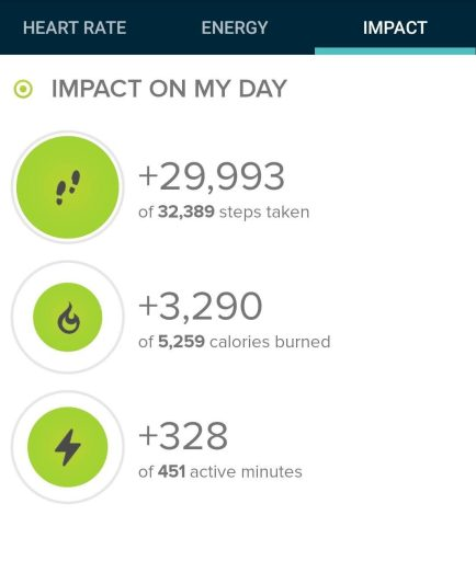 Step count from today's hike. 29993 steps for this hike.