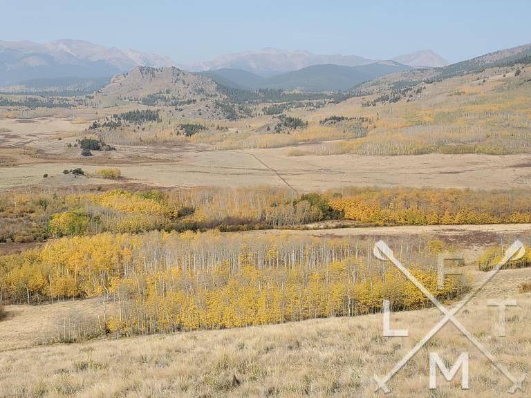 The view from the final hill with some wide open spaces.  Yellow Leafed Aspen Trees are in the foreground and dot the hills in the midground.  The background is tall snow capped mountains.