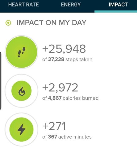 Step count from my fitbit today was at 25,948 steps.