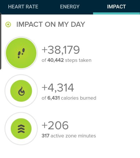 Step count from the hike today was very high at  38,179