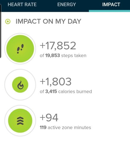 My step count from my Fitbit was 17,852 steps.
