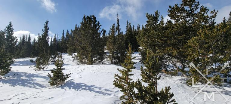 The clearing half way up Chief Mountain trail where the trail makes a 90 degree turn.