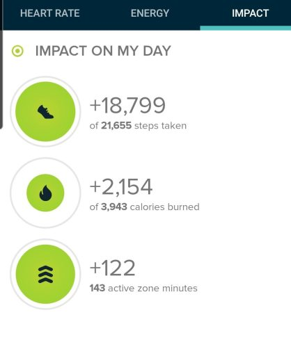 The step count for the Scout Line and Staunton Ranch Loop was 18,799 steps.