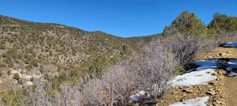 The hills of Fisher's Peak State Park from the Challenge Trails.  The brown hills are speckled with short green trees.