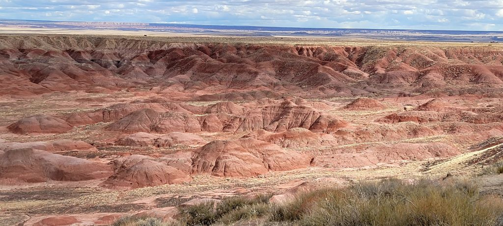 The view from the Painted Desert Rim Trail.  Pink and red hills stretch out for miles.  The picture is taken from above on top of the ridge.