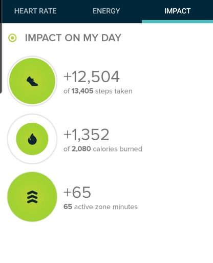 The Step count for the Freedom Trail (#302) was 12, 504 steps.
