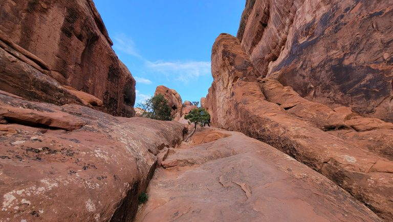 A slick rock scramble on the Devils Garden Trail.  The rock runs straight up an alley in the rock at about a 30% grade.