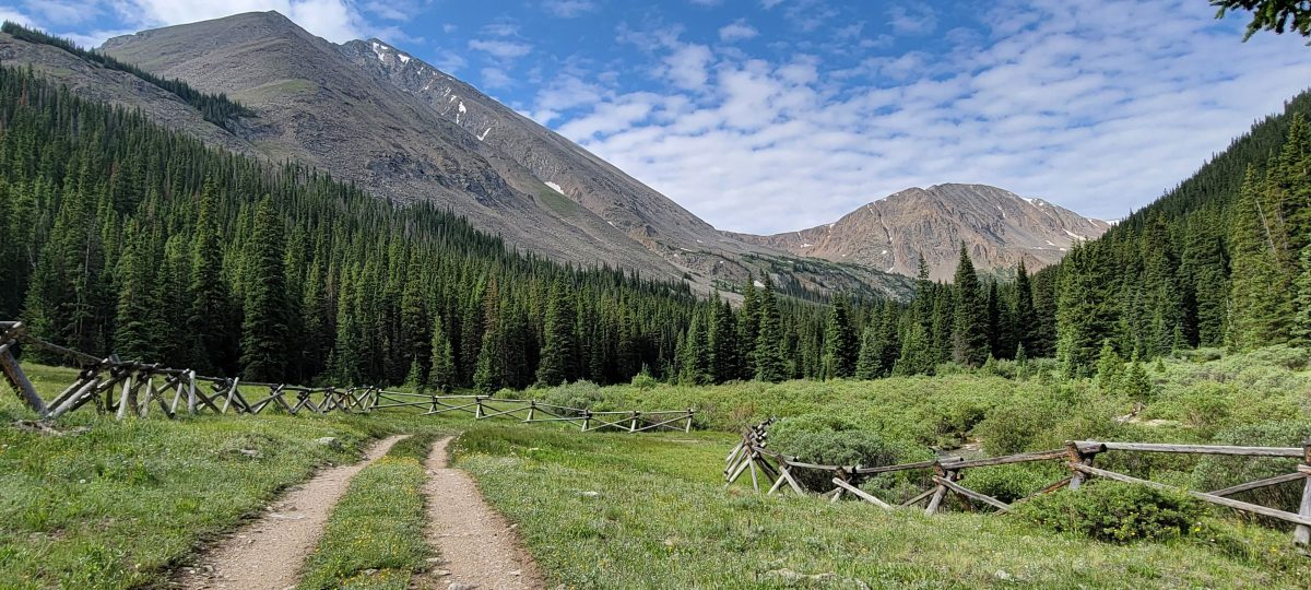 Grizzly Gulch