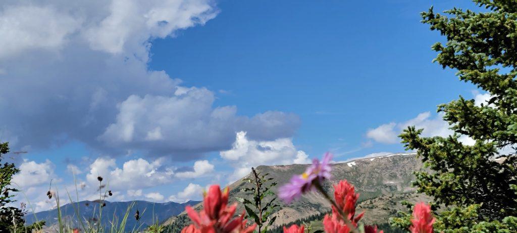 Mount Flora