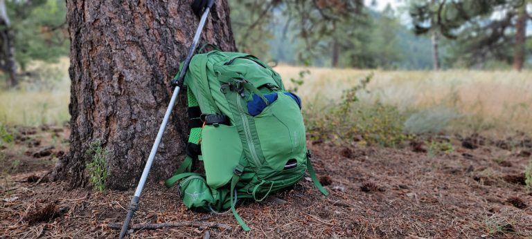 The Osprey Manta 24 backpack leaning up against a tree with a hiking pole resting on it.