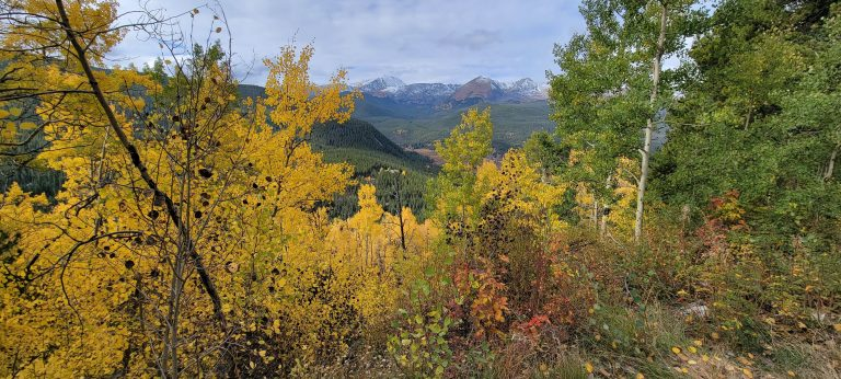 Yellow leaves and peaks in the distance from Boreas Pass.