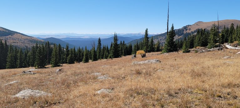 Evergreens and an open hill are all that is around near the top of the Abyss Trial to Helms Lake, a fun Colorado Fall Hike.