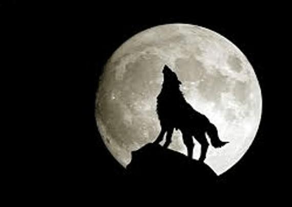 Storie d'agosto: La luna piena e il lupo mannaro (lupinaro)