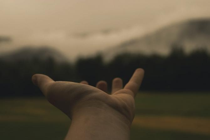 Letture amene di ferragosto: la cura