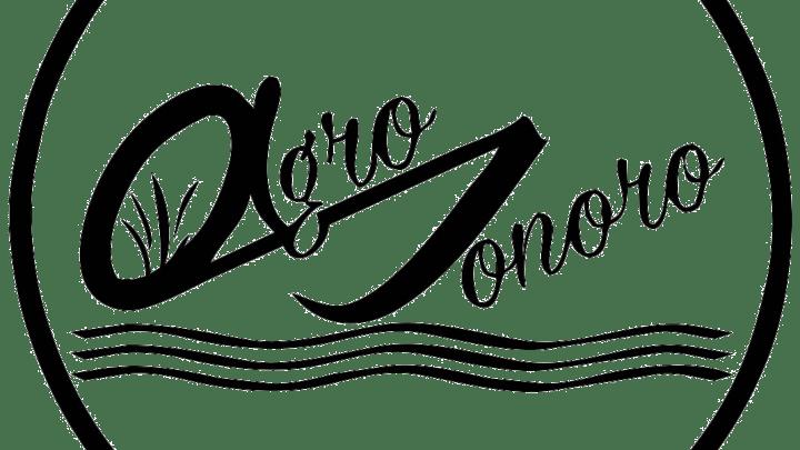 Agro Sonoro: quando la formazione diventa scoperta visuale del territorio