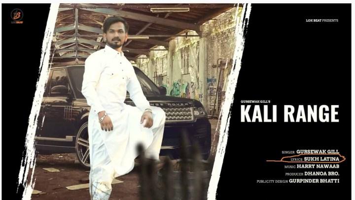 """Latina diventa un nome d'arte e a sceglierlo è un Singh. La canzone Punjabi """"Kali Range"""""""