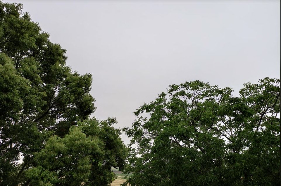 La pioggia di giugno che porta ritardo e si è smarrita e non conosco la ragione