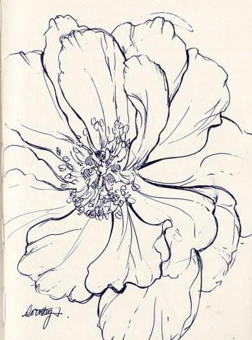 Ink pen floral sketch
