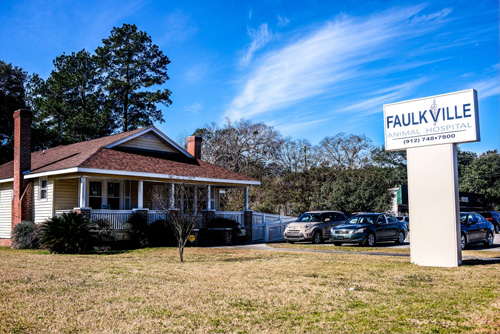 Street View - Faulkville Animal Hospital - Bloomingdale and Pooler, GA