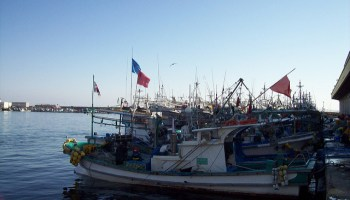 The Illegality Of Small Scale Fisheries