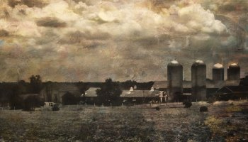 Does A Dairy Farm Visit Change Perception?
