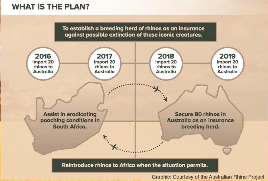 rhino_project_plan