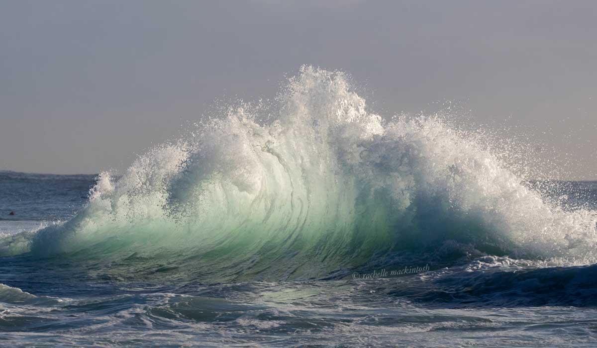 maroubra surfing wave sunrise