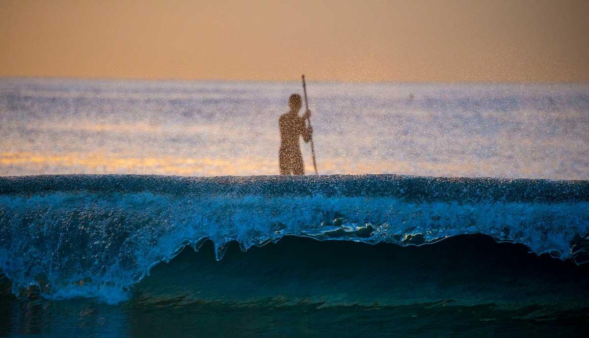 sunrise sup paddleboard sydney